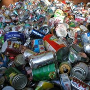 How to Recycle in Albemarle County (and Charlottesville too!)