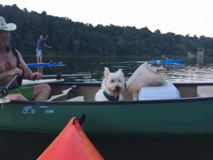 kayakers-and-dog