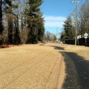 Schenk's Wastewater Pipe Complete and Greenway Trail Reopens