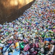 Expanded Recycling at the Ivy MUC