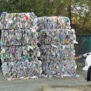 "What is ""Source Separated Recycling"" and where does it go?"