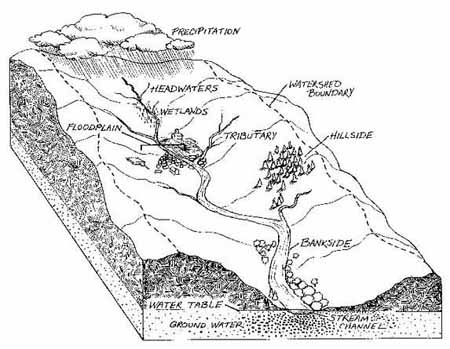 Cross section of a watershed (EPA.gov)