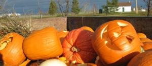 Great Pumpkin Smash @ McIntire Recycling Center
