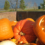 Great Pumpkin Smash